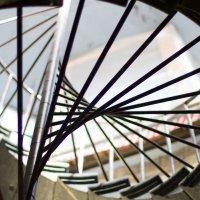 Лестница на Иссакий :: Андрей Синявин