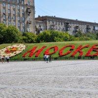 Цветочные часы на Поклонной горе :: Анатолий Колосов