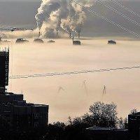 Туман :: Ирина Горовик