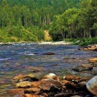 Речка горная каменистая :: Сергей Чиняев