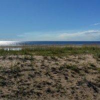Побережье Белого моря :: Павел Харлин