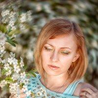 Вишнёвый цвет :: Roman Sergeev