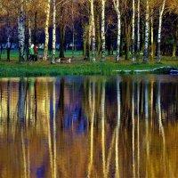 Отражения противоположного берега... :: Sergey Gordoff