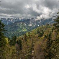 В горах... :: anatoly Gaponenko
