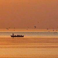 рассвет над Чёрным морем :: Елена