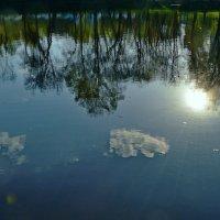 Немного солнца в холодной воде... :: Vladimir Semenchukov