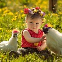 Фотосессия с курочкой :: Татьяна Семёнова