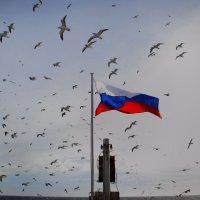 Утро России родом от сюда :: Дмитрий Черницкий