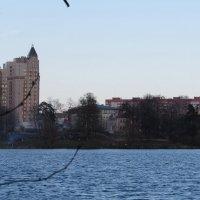 У озера :: Вера Щукина