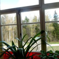 А за окном - весна! :: Мила