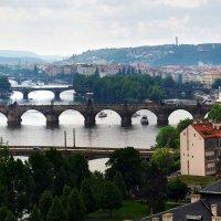 Мосты Праги :: Николай Ярёменко