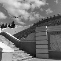 фрагмент Чкаловской лестницы :: Ирина ***