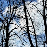 Небо и самолёты :: Натали Пам