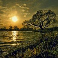 Шёл день задумчивый к закату... :: Александр Бойко