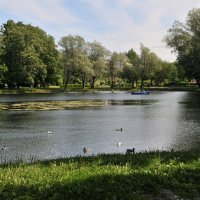 Отдых в парке... :: Валерий Подорожный