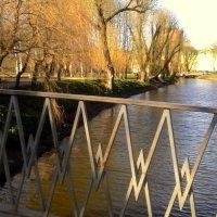 Красивый пейзаж с мостика :: Svetlana Lyaxovich