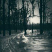 Сон в конце весны... :: Laborant Григоров