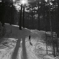 Зима :: Александр Сироткин
