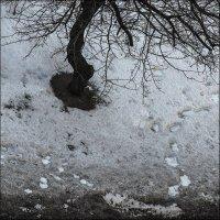 Чёрный снег.. :: Юрий Васильев