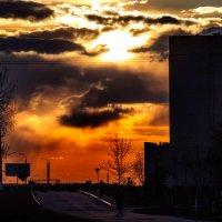Холодный вечер 9 мая на фоне рыжего заката. :: Анатолий Клепешнёв