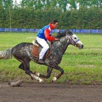 Ты лети мой конь стрелою , . . :: Евгений Кузнецов