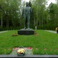 Памятник Гагарину в Звездном городке :: елена