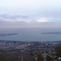 Геленджик с высоты 630 м над уровнем моря. :: Галина