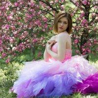 Яблоневый цвет :: Юлия