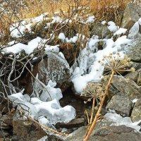 Замерзающий ручей :: Сергей Карцев