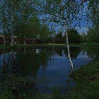 вечер на пруду :: Михаил Филиппов