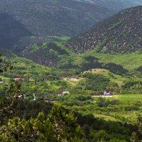 средь крымских гор :: Sergey Bagach