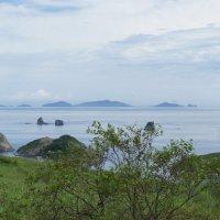 Дальневосточный морской заповедник :: Надежда
