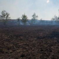 выжженная земля :: Станислав Пономарчук