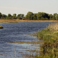 озеро :: оксана