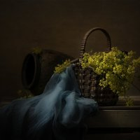 Желтые цветы :: Светлана Горбачёва