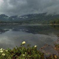Затишье после дождя :: Дамир Белоколенко