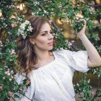 Яблони в цвету :: Анна Силкина