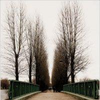 Любимый мостик :: Galina Belugina