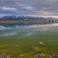 Озеро Моно, Калифорния. :: Светлана Риццо