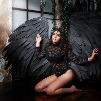 Крылья :: Елена Князева