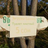 Шютка - юмора :: Сергей Рычков