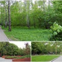 Весенние тропинки парка Кузьминки. :: Лара ***