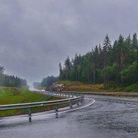 В Карелию под дождем :: Ольга СПб