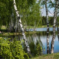 Хорошо отдыхать в жаркий день на озере! :: Владимир Безбородов