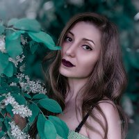 Весна :: Anna Albert