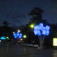 Набережная Ялты ночью :: татьяна