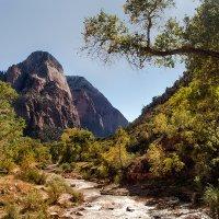 горный пейзаж :: svabboy photo