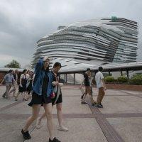 Кампус Политехнического Университета. Гонконг :: Sofia Rakitskaia