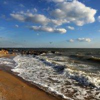 Азовское море Бердянск :: Нилла Шарафан