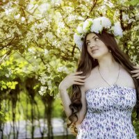 Яблони в цвету :: Настасья Чивирёва